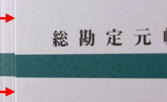 背幅自由自在・総勘定元帳ファイルのアイキャッチ画像